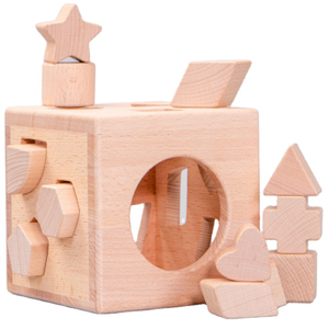 Block Sorting Toy Matching Shape Box