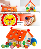 Wooden Building Blocks Wisdom Shape House